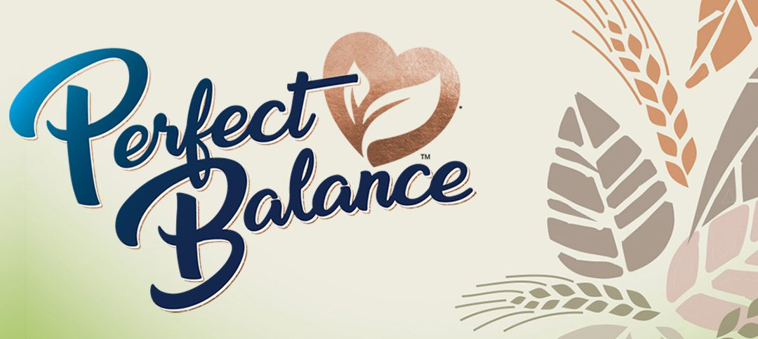 Perfect Balance Coming Soon
